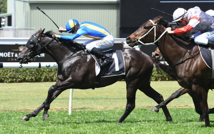 Baker Wins With Another Newhaven Park Purchase