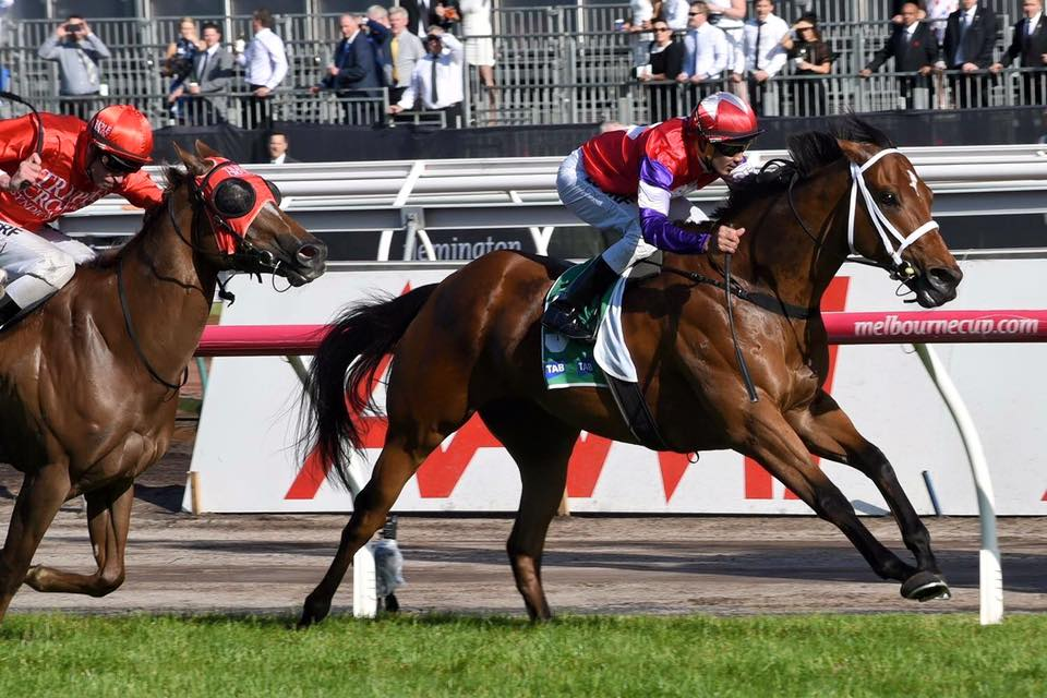 Newhaven Park Bred Wins SA Horse of the Year