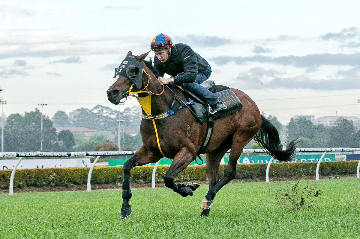 ENGLISH HAS SPRING IN HER STEP FOR EVEREST