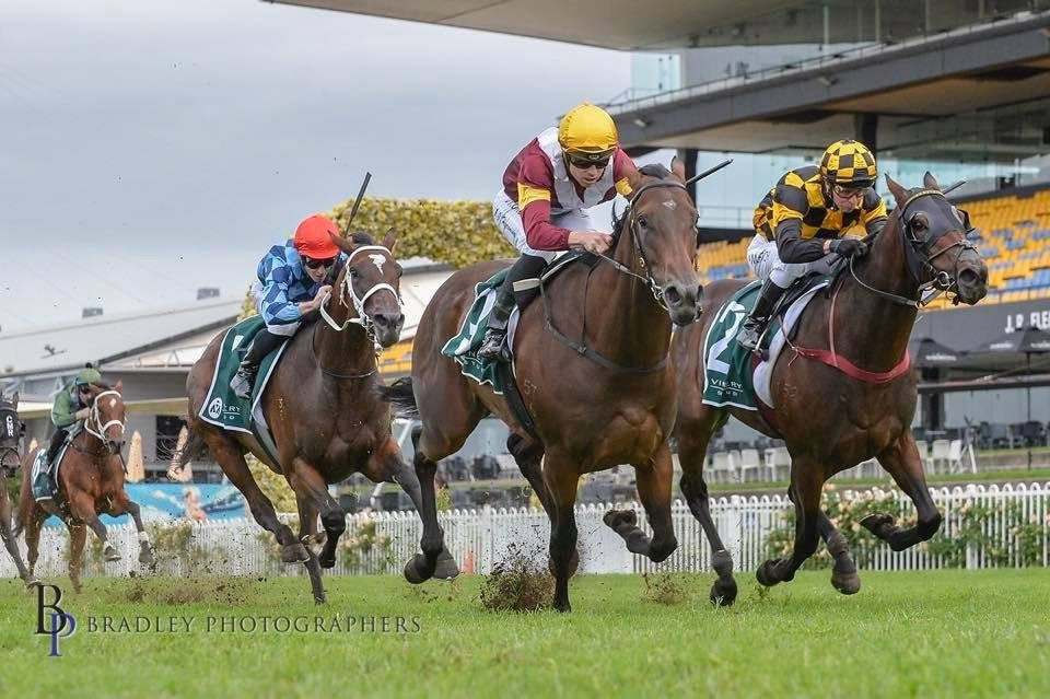 Shout The Bar Claims the Vinery Stud Stakes